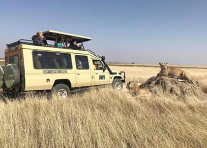 5-Day Manyara, Ngorongoro, Serengeti & Tarangire (Camping)